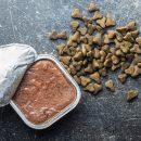 Types d'aliment disponibles pour un chien